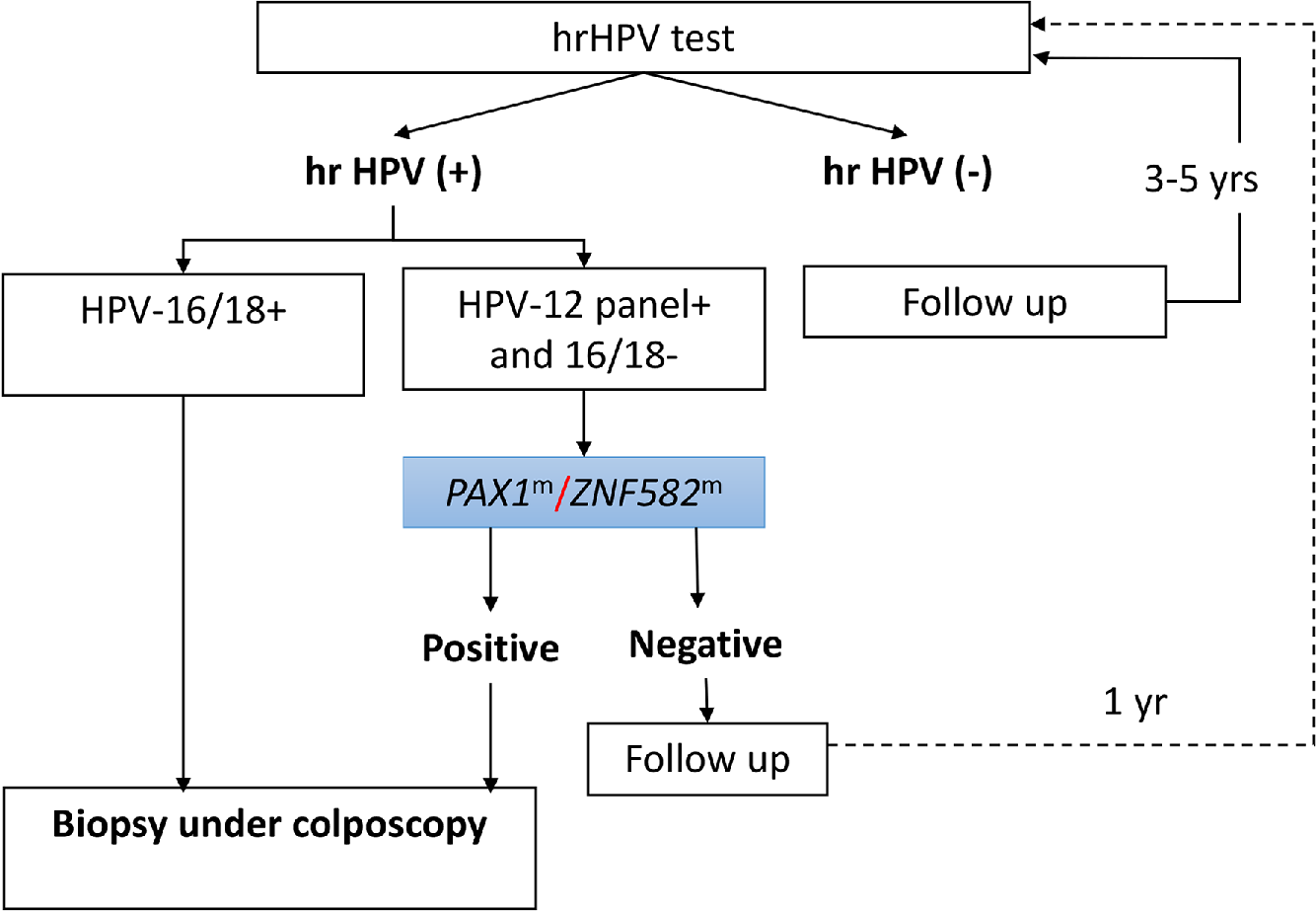 hpv high risk non 16 18 detected cancer aggressive scale