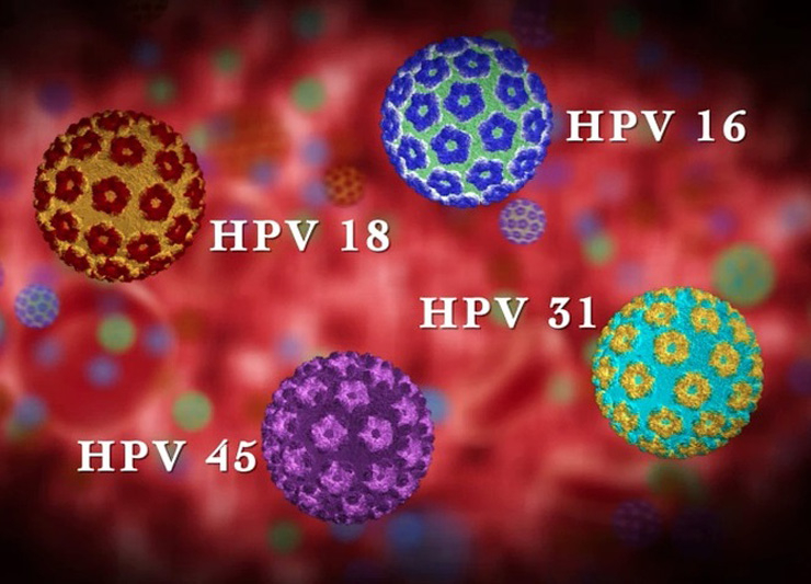 virus del papiloma humano tipo 18 helminthic therapy providers