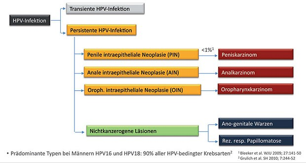 hpv impfung alter