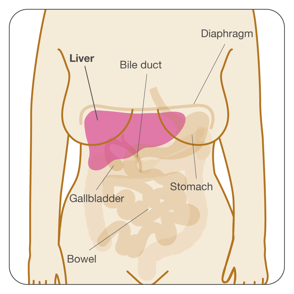 uterine cancer end stage stoc stickers