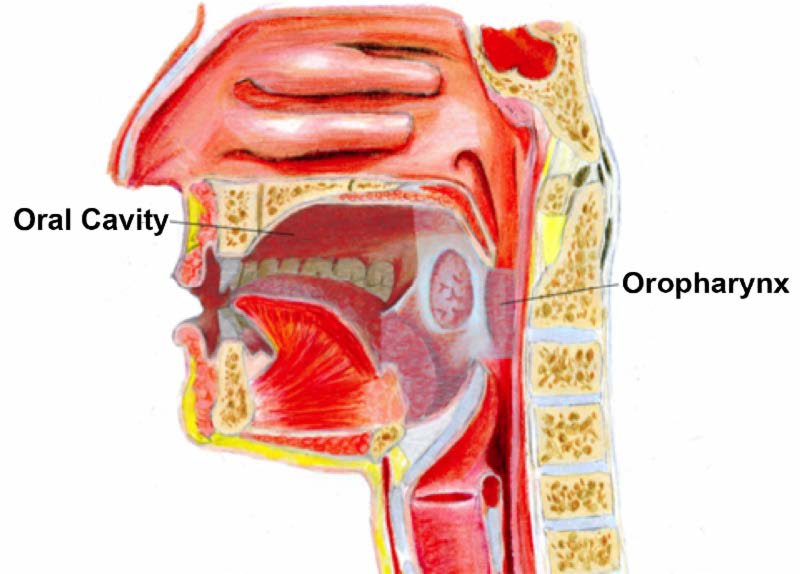 hpv oropharyngeal cancer staging