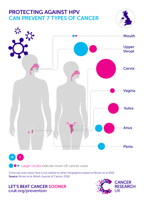 hpv cancer research uk papilloma virus lingua cause