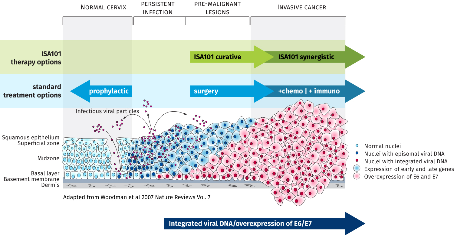 hpv cervical cancer review