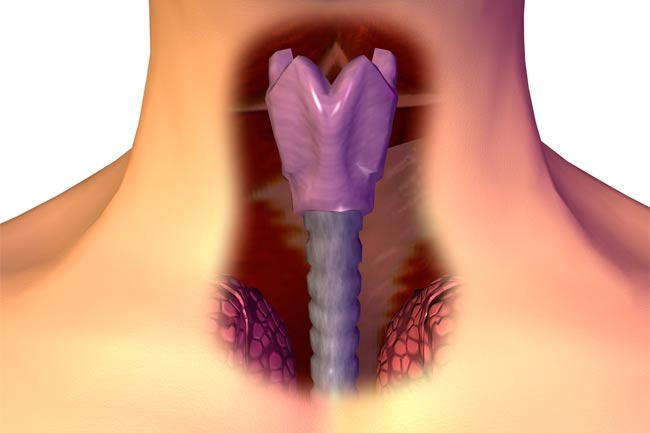 hpv and throat and mouth cancer hpv ed herpes